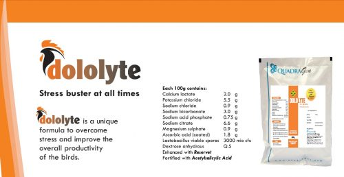 quadragen-dololyte
